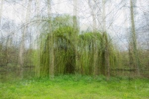5. Sans titre - Série Undefined Landscapes- Impression Jet d'Encre - Tirage contrecollé - 60 x 90 cm