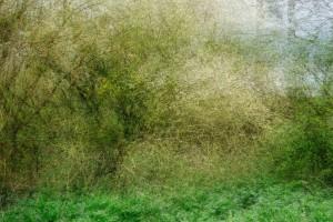 6. Sans titre - Série Undefined Landscapes- Impression Jet d'Encre - Tirage contrecollé - 60 x 90 cm