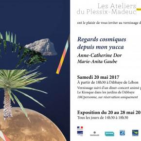 (Français) 20.05 > 28.05.2017 : Regards cosmiques depuis mon yucca
