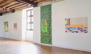 Vue de l'exposition Gleno (c) Hazel Ann Watling