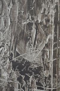 Kai-Chun Chang. Jardin d'hiver-Simulacre#2, 2019 (détail). Acrylique sur toile.