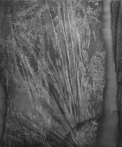 Jardin d'hiver - Simulacre I, 2019. Acrylique sur toile, 120x100cm