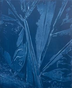 Jardin d'hiver - cyanotype II, 2019. Acrylique sur toile, 60x50cm