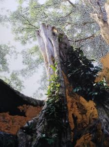 Tetrameles nudiflora #20, 2019pigment et grattagesur photographie32x24cm