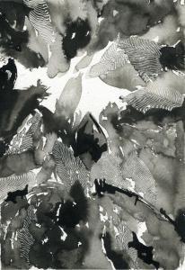 Tetrameles nudiflora #22, 2019encre de chine et grattage32x24cm