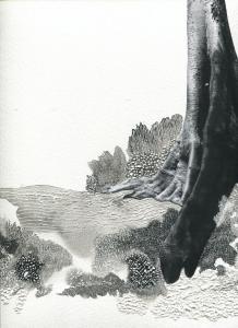 Tetrameles nudiflora #5, dessin par grattage sur encre de chine et collage, 24 x 32cm, 2018